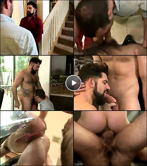 gay hairy men cum video